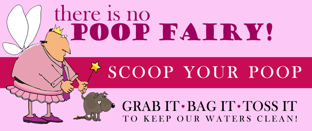 There Is No Poop Fairy