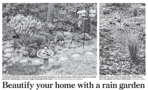 Great Article in the Greenville News on Rain Gardens